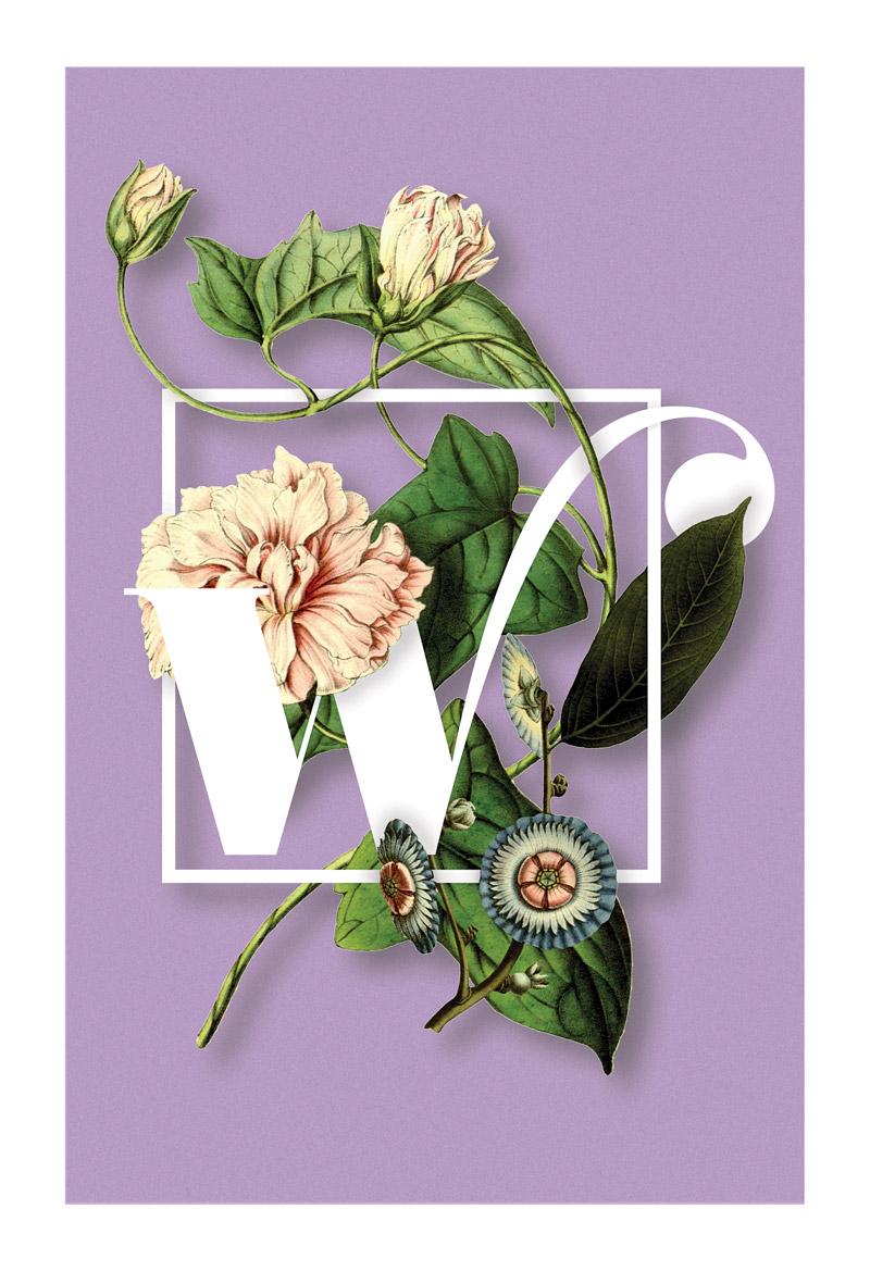 w-print-web