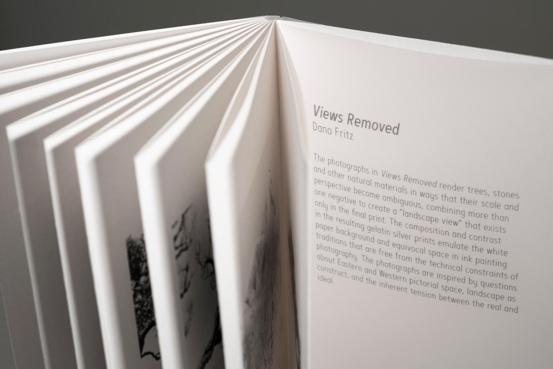 Dana-Fritz.Views-Removed-accordion-book-vellum-inner-cover-statement