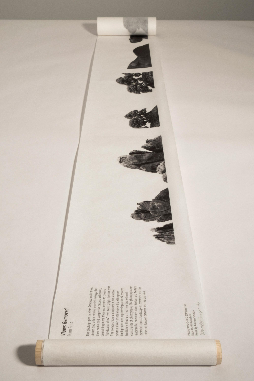 Dana-Fritz.Views-Removed-handscroll-open-statement-colophon